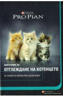 Наръчник за отглеждане на котенцето